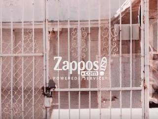Zappos Streetwear Launch